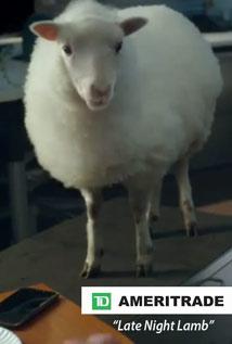 late-night-lamb-sm
