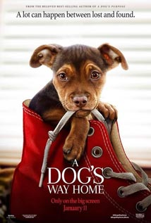 A-Dogs-Way-Home-movie-poster-for-feature