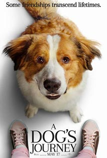 a-dogs-journey-sized-for-feature